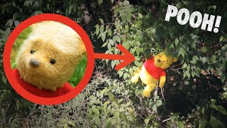 POOH IN REAL LIFE! *I Found Winnie The Pooh!*