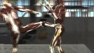 National Geographic's Fight Science: Capoeira Kick vs Karate, Muay Thai, Tae Kwon Do