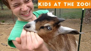 Cutest Kids at the Zoo Compilation 2017 | Funny Pet Videos