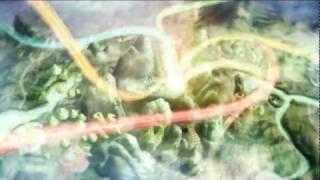 Чибики / Fantasy Zhu Xian официальный русский трейлер.