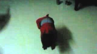 safa dance