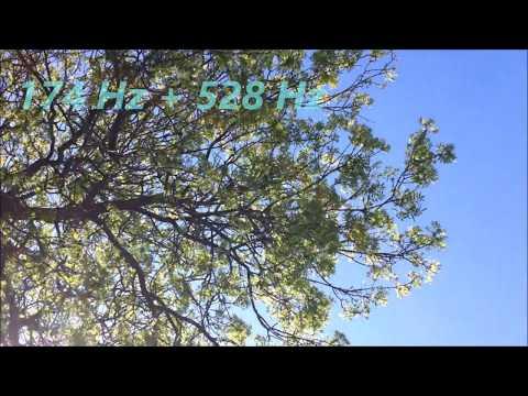 174Hz + 528Hz Miracle Tone Meditation Music | Reduce Pain + Increase Awareness | Restore Damaged DNA