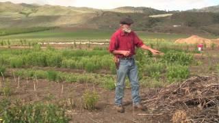 Okanogan Biodiversity Farm I