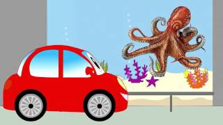 Car for children. Animals Ocean movie funny educational videos for kids English
