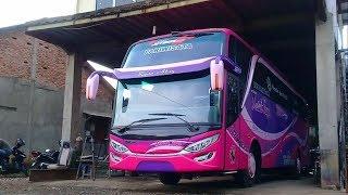 Baru Rilis!! 2 Unit Bus HDD Medal Jaya New Livery Batik by AdiPutro Karoseri