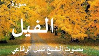سورة الفيل بصوت نبيل الرفاعي