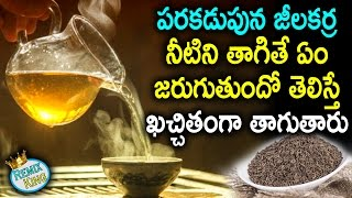Incredible Benefits of Cumin Water for Your Skin, Hair and Health | Jeera Water(Jaljeera) Remix King