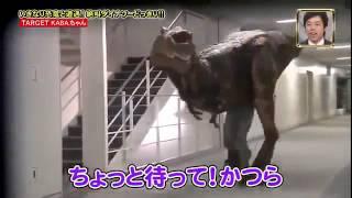 [FULL] Japanese Dinosaur Prank
