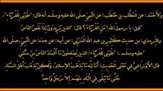 بدأ الإسلام غريبا وسيعود غريبا - العلامة صالح الفوزان حفظه الله