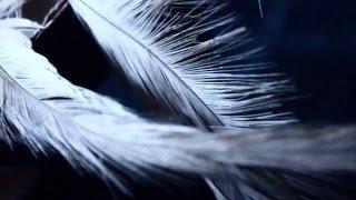 VOLUMENMEDIO || Grabando Ep Aire Estelar - (D2)