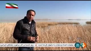 Iran Migrating birds, Soldouz wetland, Naqadeh county پرندگان مهاجر تالاب سولدوز نقده ايران