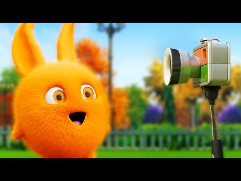 Xxx Mp4 Cartoon Sunny Bunnies SELFIE 📷 Funny Cartoons For Children 3gp Sex