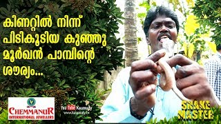 Angry Cobra rescued from the well | Snakemaster | Vava Suresh | EP 411 | Kaumudy TV