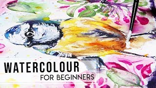BEST Watercolour Advice for Beginners