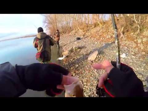 микроджиговая ловля видео