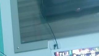 React Ao Sorteio Da Super Copa Desimpedidos
