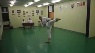 Wado Ryu Karate Exam - 4. kyu