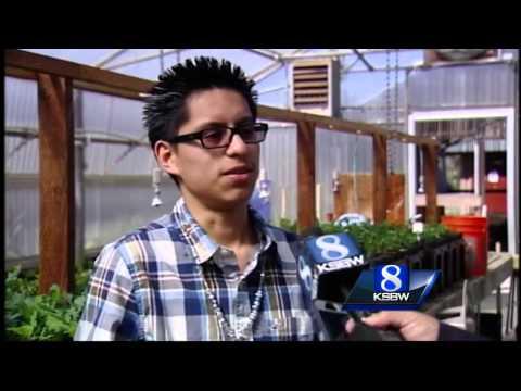 Renaissance High School students study Sudden Oak Death