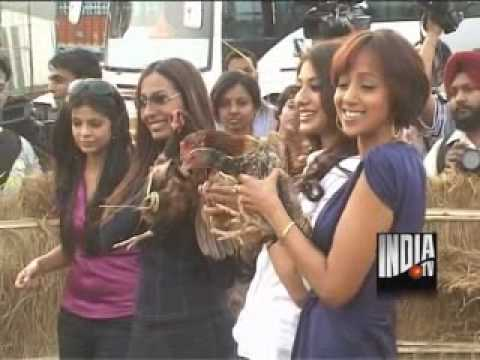 Watch Exclusive Interview Of 8 Desi Girls