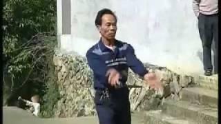 Yongtai Ji Fa (Rooster Boxing)