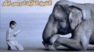 سورة الفيل