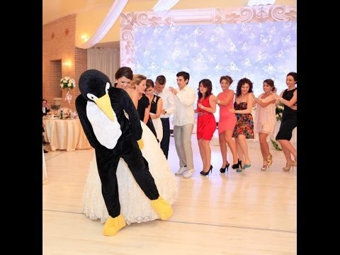 PENGUINE DANCE ALBANIA