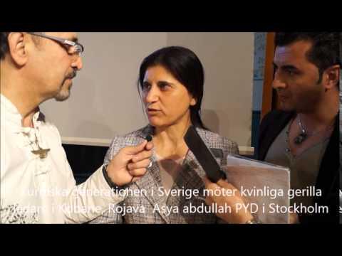 Xxx Mp4 Asye Abdullah PYD Stockholm Kurdiska Generationen I Sverige 3gp Sex