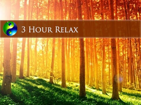 3 Hour Relaxing Music New Age Music; Instrumental Music; Relaxation Music; Gentle Music 🌅114