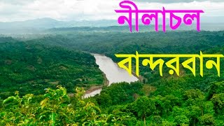 Nilgiri, Bandarban, Bangladesh / নীলাচল, বান্দরবান / Nilgiri Hill Resorts, Bandarban, Bangladesh .