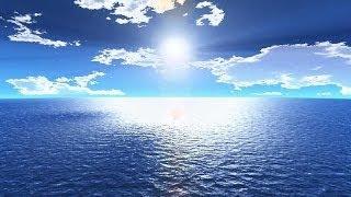عجائب خلق الله في البحر