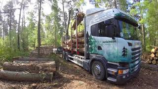 Scania timber truck loading.