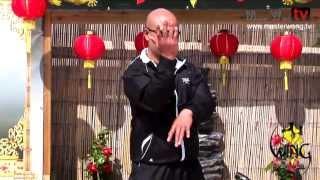 Wing Chun techniques - lesson 6 (Gan sao/Block all kick)