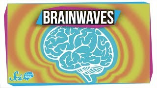 What Do Different Brainwaves Mean?