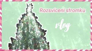Rozsvícení vánočního stromku | VÁNOCE S ANY