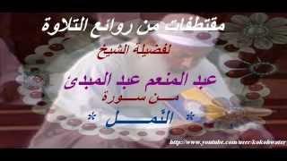 مقتطفات من روائع التلاوة  من سورة النمل  لفضيلة الشيخ منعم عبد المبدئ
