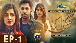 Tishnagi Dil Ki   Episode 1 uploaded on 18-06-2017 124797 views