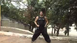 Vídeo Aula   Defesas básicas de kung fu