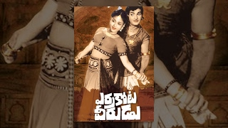 Errakota Veerudu Telugu Full Length Movie || ఎర్రకోట వీరుడు సినిమా || NTR , Savitri