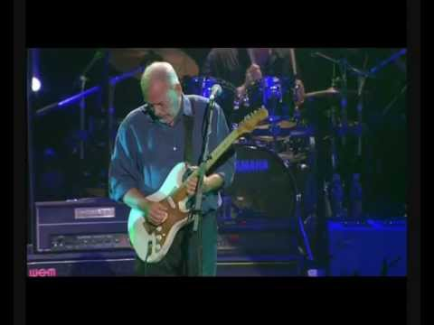 Solo Guitar Gilmour Marvin In Concert 50 Years Of The Fender Stratocaster