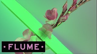 Flume - Never Be Like You feat. Kai (Disclosure Remix)