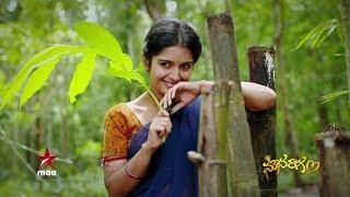 Mounaraagam Title Song by Singer Sunitha -  #మౌనరాగం