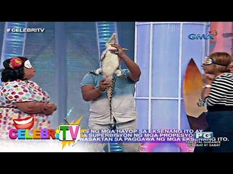 Xxx Mp4 CelebriTV Boobsie At Donita Nose Ginulantang Ng Maliit Na Buwaya 3gp Sex
