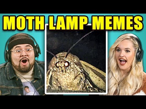 Xxx Mp4 Adults React To Moth Lamp Meme Compilation 3gp Sex