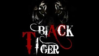 Shishe Ki Umar Pyaar KI DJ Remix by Black Tiger