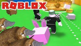 EN ARMÉ AV NÄBBDJUR | ROBLOX Pet Simulator