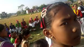 Deep Chaudhary Tharu Video Collection ( Dance Of Koldada Surkhet Nepal)