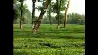 Song O Amar Desher Mati by Panorama