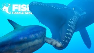 EATING THE BIGGEST CARNIVORES IN THE OCEAN!! - Fish Feed Grow | 19