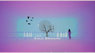Kalo Brikkho (কালো বৃক্ষ) - BhaiBrothers LTD. | Bangla New Song