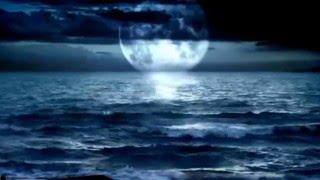 ইসলামিক গান মায়ের বাংলা গজল মাগো তুমি কাঁদছো কেন Bangla Islamic Song (Song of mother by Anis ansari)